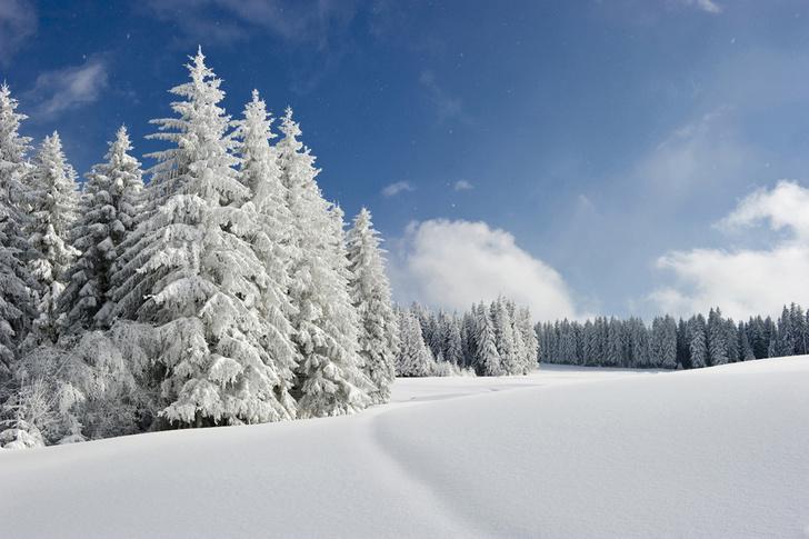 Предстоящая зима будет самой холодной за последние 100 лет фото [2]