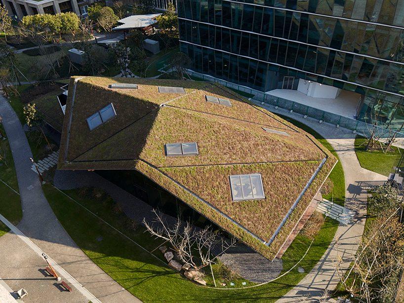Пятый фасад: зеленые крыши (галерея 27, фото 0)