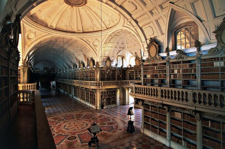 Самые потрясающие библиотеки мира (фото 14)