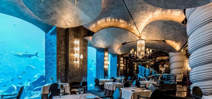 Полное погружение: топ-10 лучших подводных ресторанов (фото 25)