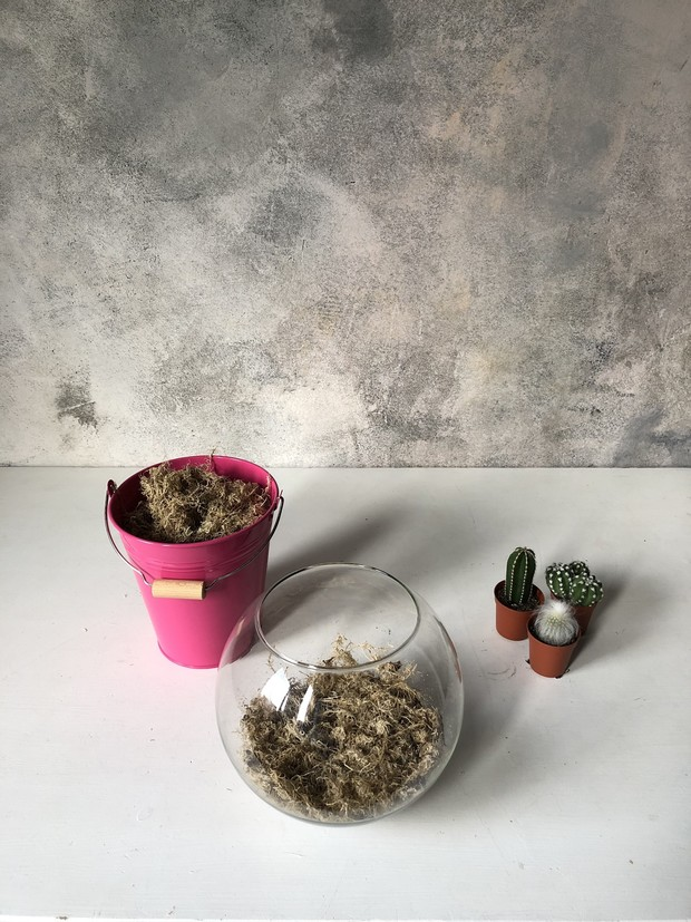 Как сделать зимний флорариум своими руками (фото 7)