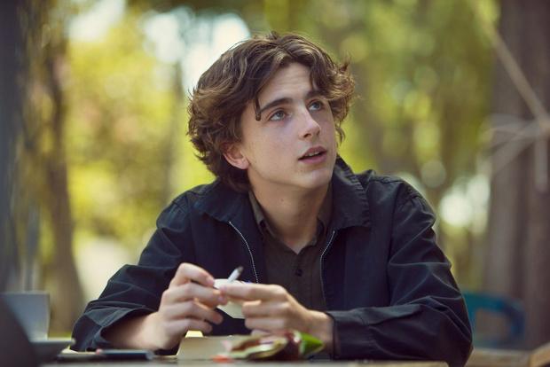 Самый юный номинант на «Оскар»: что нужно знать о Тимоти Шаламе? (фото 5)