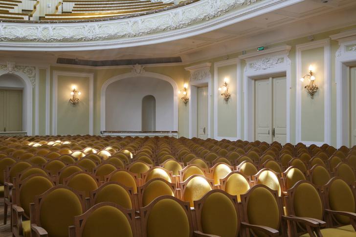 Чем заняться дома: онлайн лекции, выставки, концерты (фото 11)