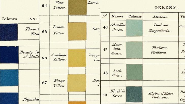 Классификатор цветов XIX века (фото 10)