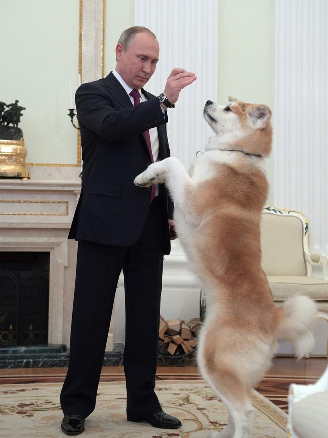 Владимиру Путину - 66 лет: стиль президента в лучших фотографиях (фото 7)