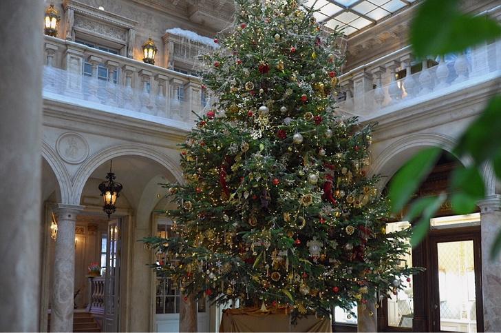Самые красивые новогодние елки Москвы (фото 10)