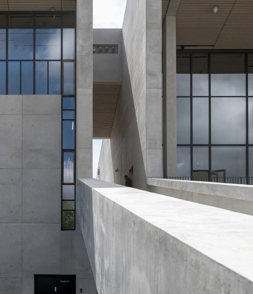 Пятый фасад: зеленые крыши (галерея 19, фото 4)
