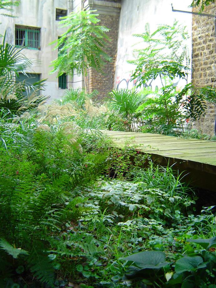 Садовые дорожки: практичные советы | галерея [3] фото [5]