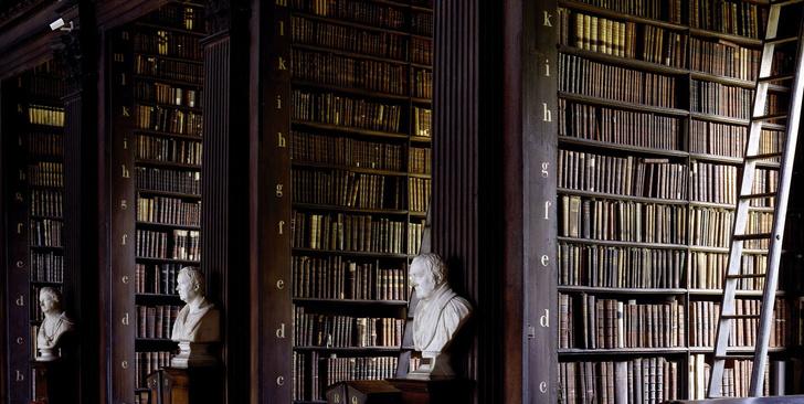 Самые потрясающие библиотеки мира (фото 46)