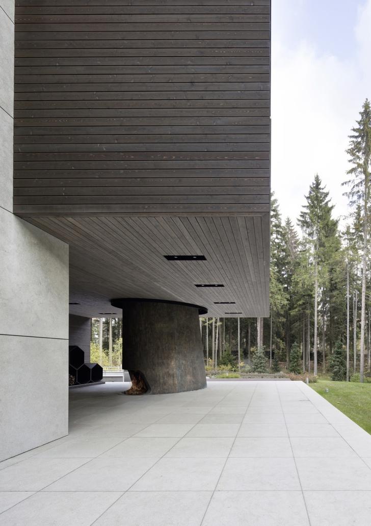 Необычный загородный дом по проекту Уильяма Савайи (фото 4)