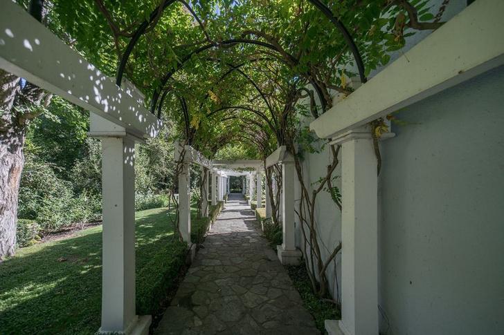 Особняк Серены Уильямс в предместье Лос-Анджелеса выставлен на продажу за $12 миллионов фото [9]