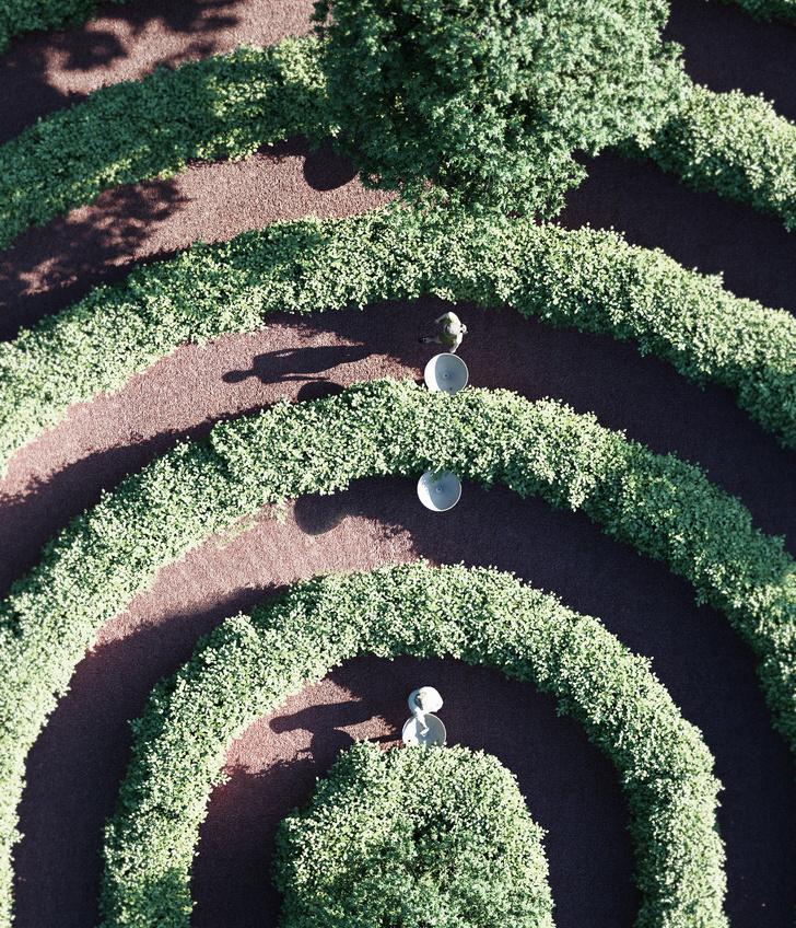 Проект парка-лабиринта Parc de la Distance (фото 7)