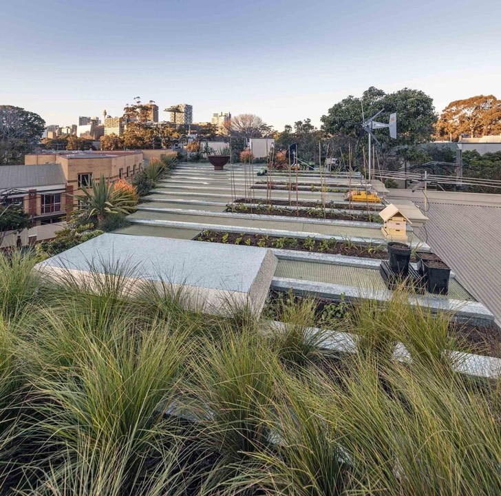 Добро пожаловать в джунгли: экодом в Сиднее (фото 23)