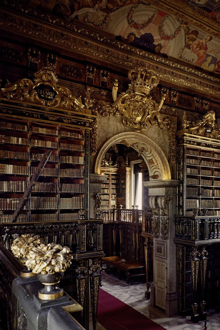 Самые потрясающие библиотеки мира (фото 31)