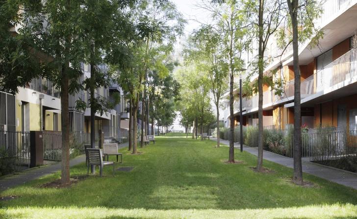 Город-сад: интервью с ландшафтным дизайнером Анри Бава (фото 25)