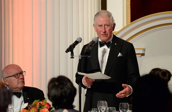 У принца Чарльза обнаружили коронавирус (фото 1)