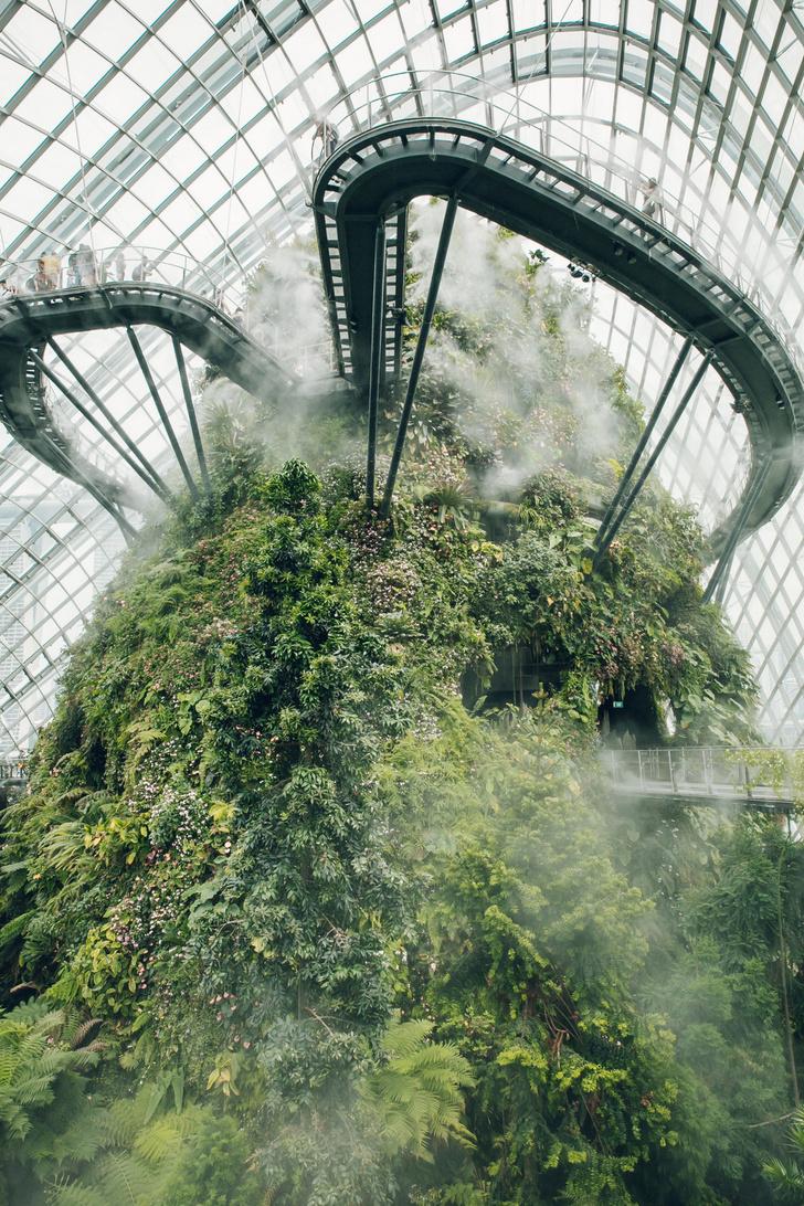 Самые необычные оранжереи мира (фото 55)