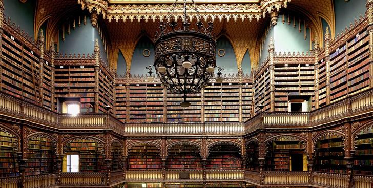 Самые потрясающие библиотеки мира (фото 53)