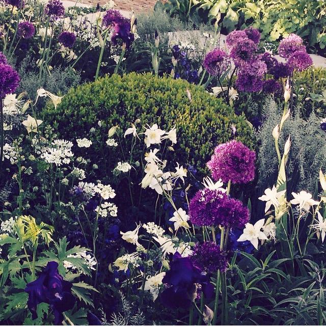 Модный сад 2015