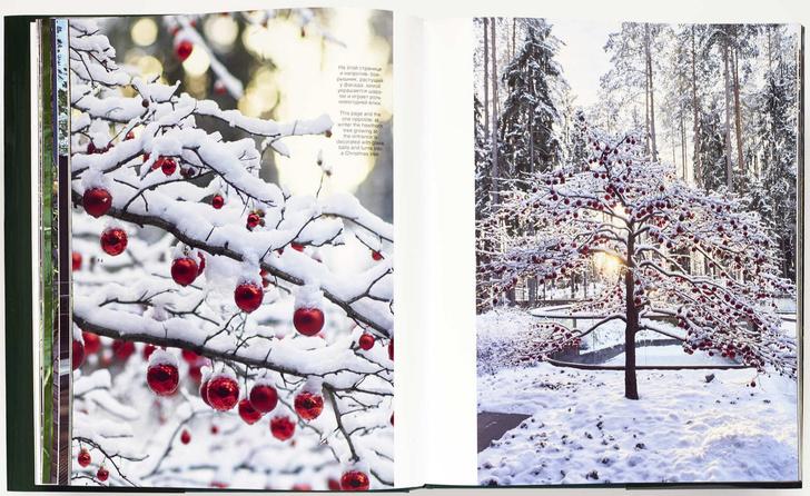 Х лет. Х садов: книга о ландшафтном дизайне от бюро MOX (фото 2)