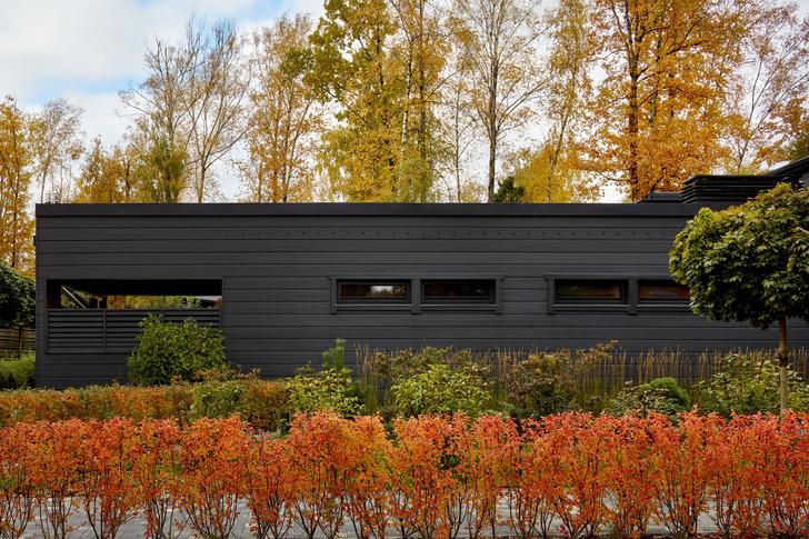 Деревянные дома (фото 1)