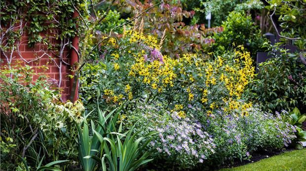 Современный дом и сад в пригороде Мельбурна (фото 9)