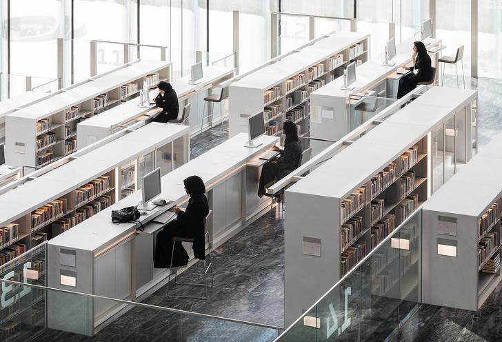 Библиотека по проекту Рема Колхаса (фото 7)