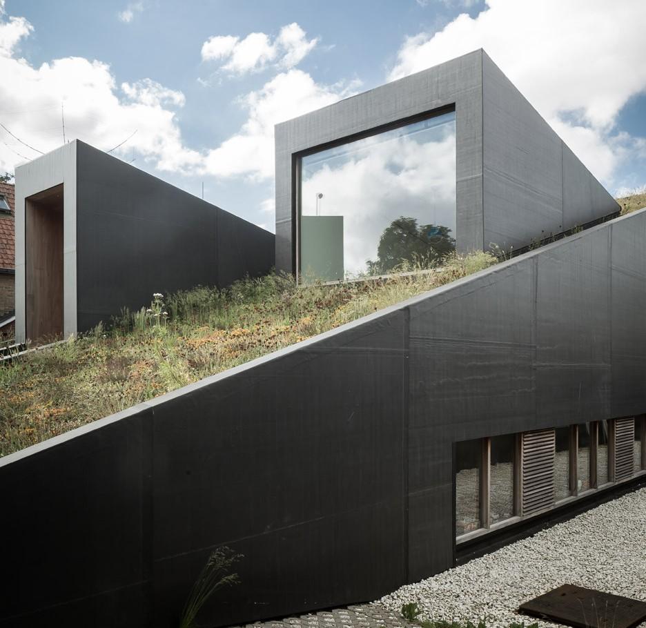 Пятый фасад: зеленые крыши (галерея 23, фото 1)