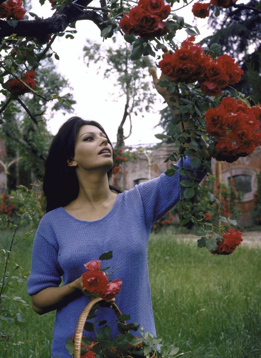 Бывшая вилла Софи Лорен в Риме (фото 0)