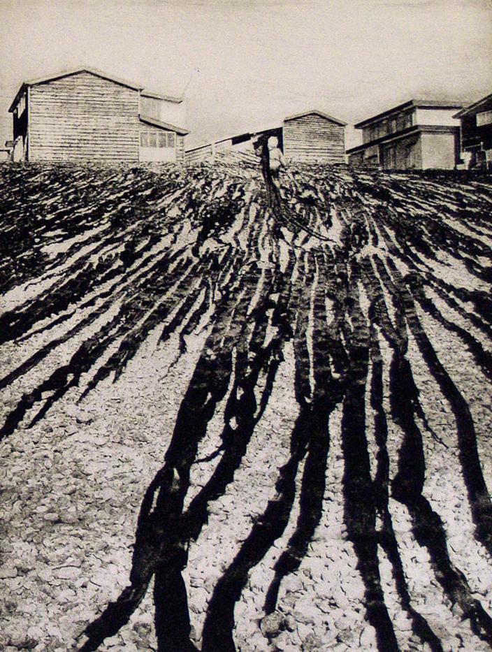 В поисках пути. Фотогравюры Питера Миллера