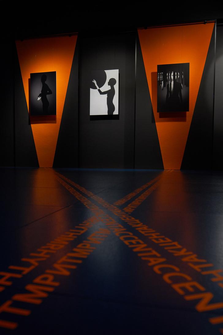 Выставка «Майер VS Брюханов» в арт-галерее VS Unio (фото 8)