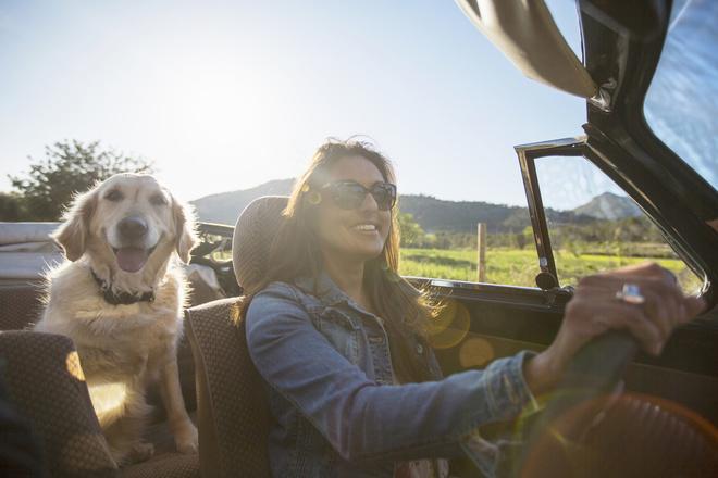 9 причин, почему путешествия делают нас счастливее (фото 31)