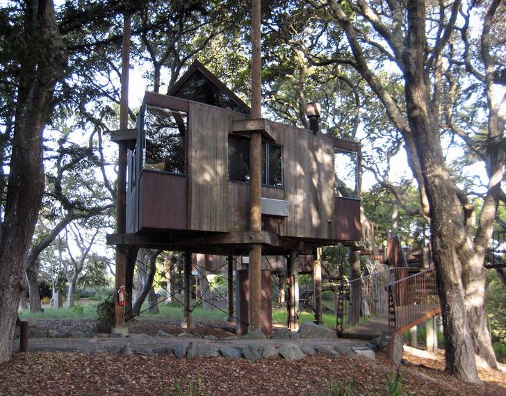Экотренд: отели на деревьях (фото 9)