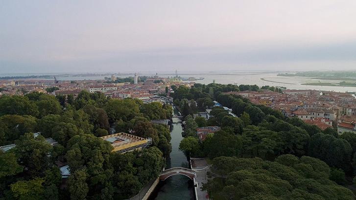 Марина Брагинская о Венецианской биеннале (фото 6)