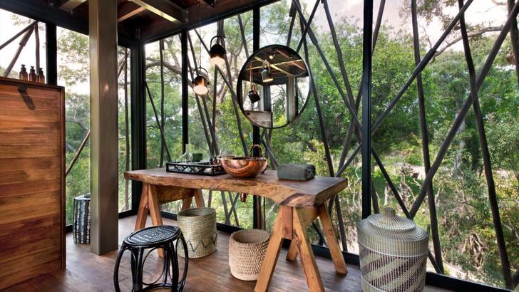 Легенда джунглей: отель на дереве в Южной Африке (фото 6)