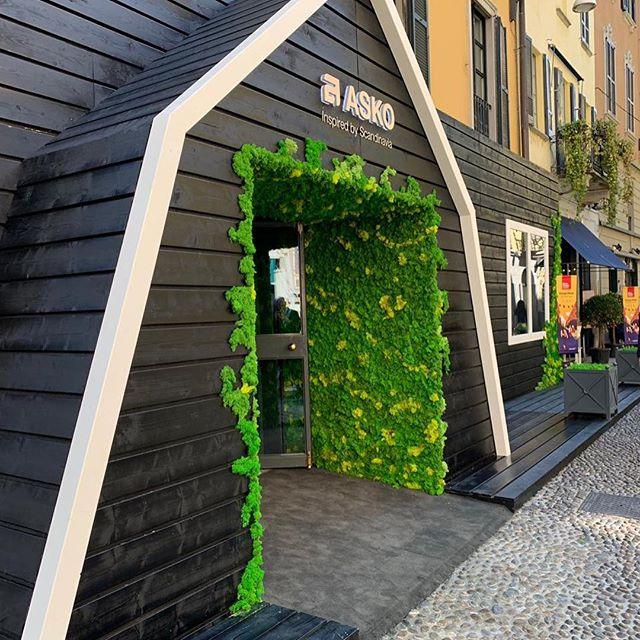 ELLE Decoration x ASKO: презентация в Милане (фото 2)