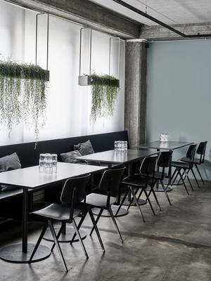 Дуб, бетон и скандинавский дизайн: сауна по проекту Studio Puisto (фото 2.1)