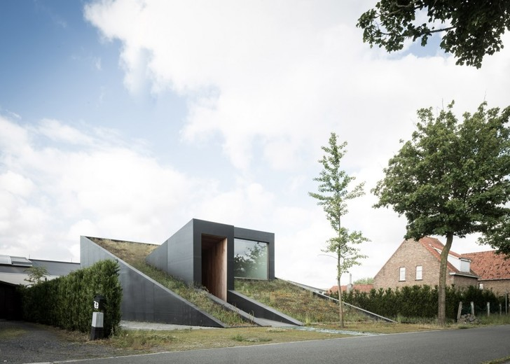 Пятый фасад: зеленые крыши (фото 21)