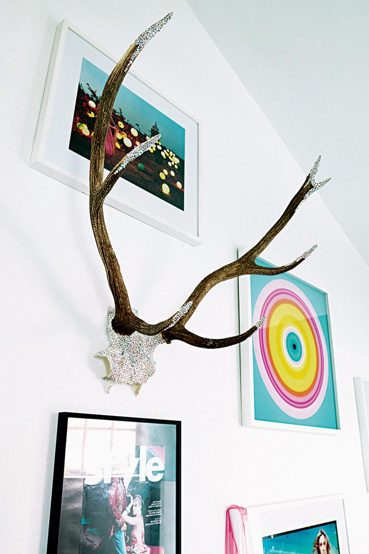 На стене в гостиной среди постеров и фотографий висят оленьи рога со стразами Swarovski.