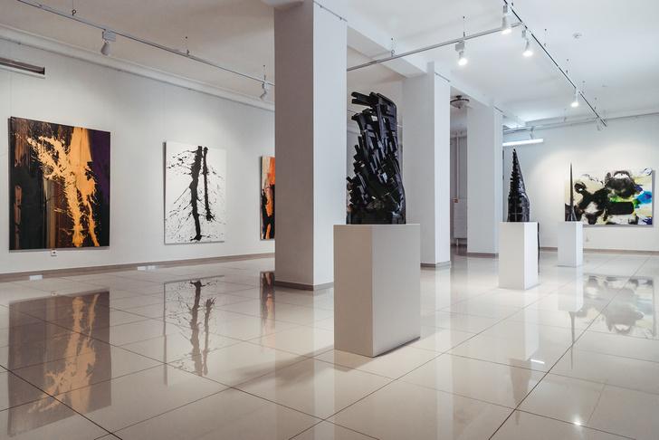 Форма & Цвет: выставка Валерия Пчелина и Игоря Михайленко (фото 15)