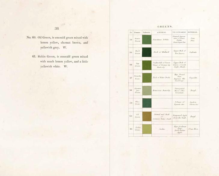 Классификатор цветов XIX века (фото 7)