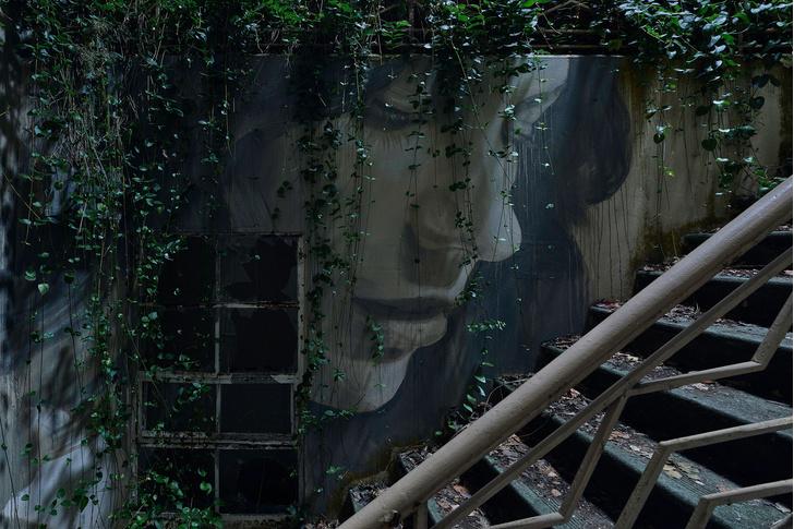 Блеск и нищета: картины на стенах заброшенного особняка (фото 6)