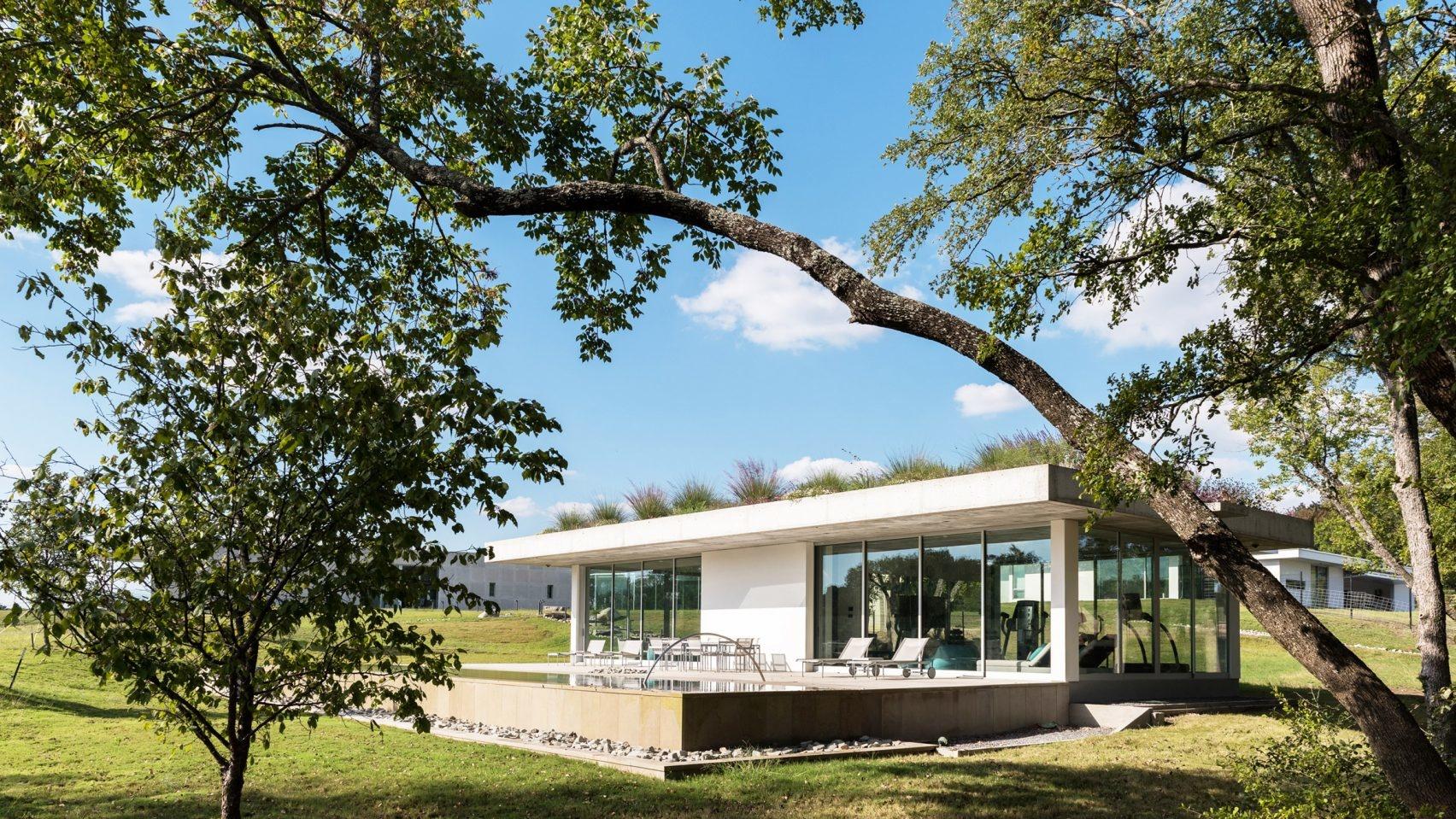 Пятый фасад: зеленые крыши (галерея 11, фото 0)
