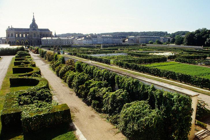 Огород короля в Версале