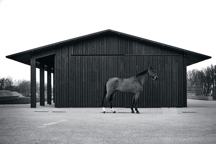 Архитектор Винсент ван Дуйсен - о цвете, форме и будущем дизайна фото [4]