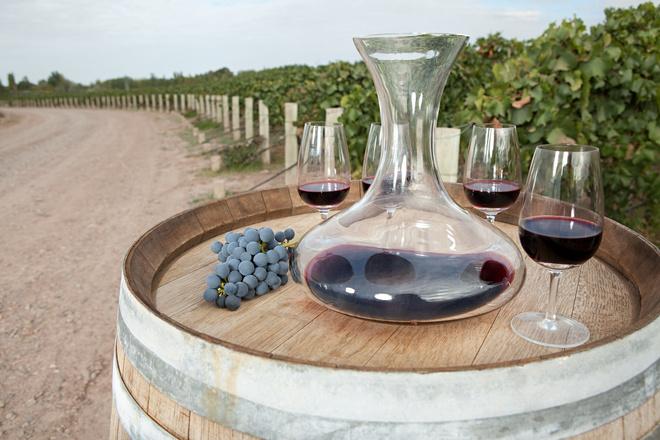 Новый Новый Свет: какие вина из «большой шестерки» выбрать (фото 11)