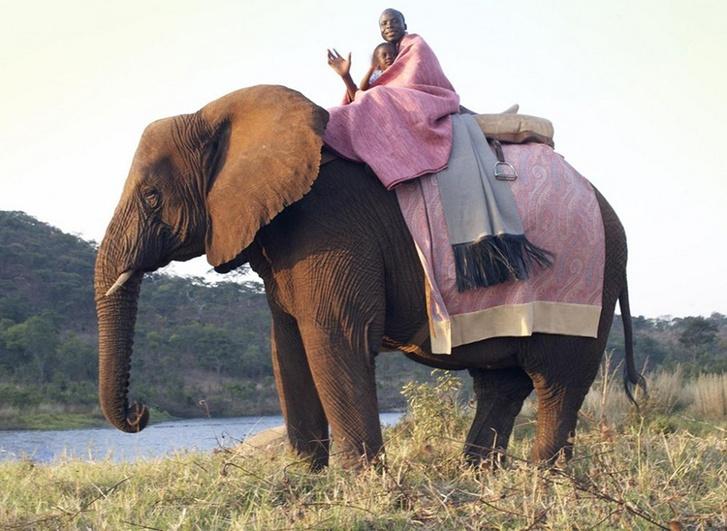 Фото из путешествий Берни де Ле Куоньи по ЮАР.