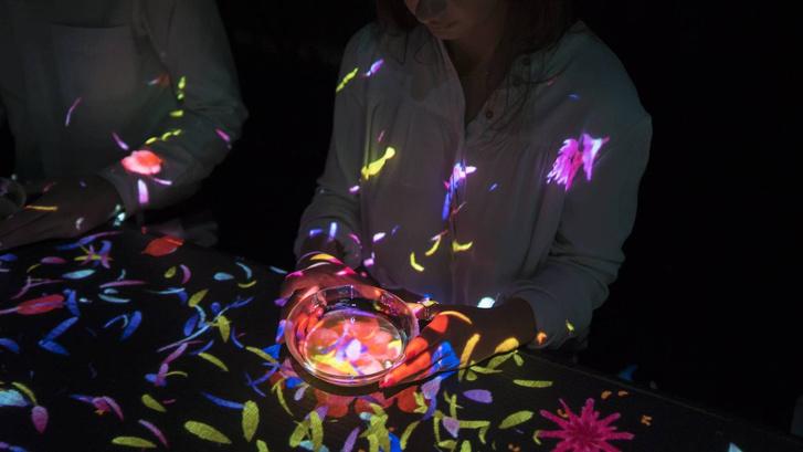 В Токио открылся первый в мире музей цифрового искусства (фото 3)