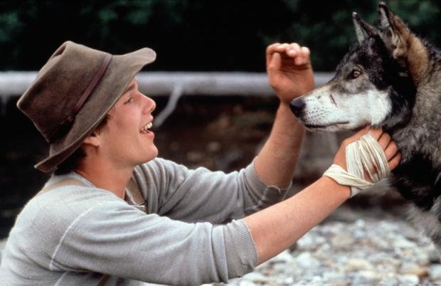 Самые трогательные фильмы о животных (фото 29)