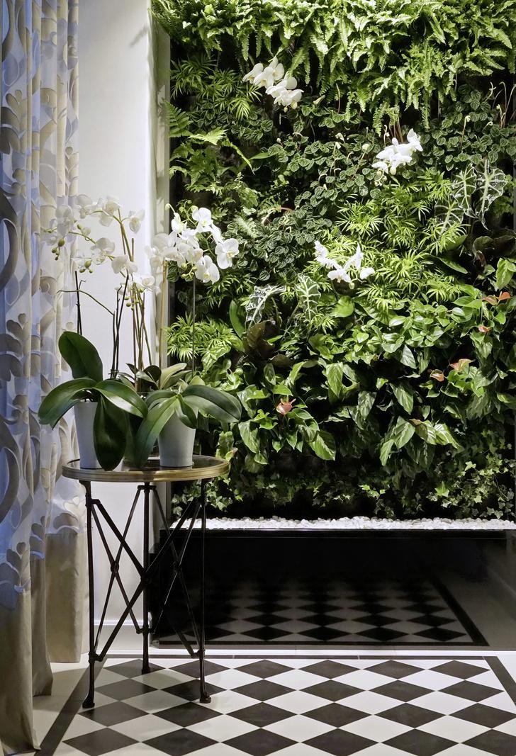 Практика: зеленые стены (фото 12)